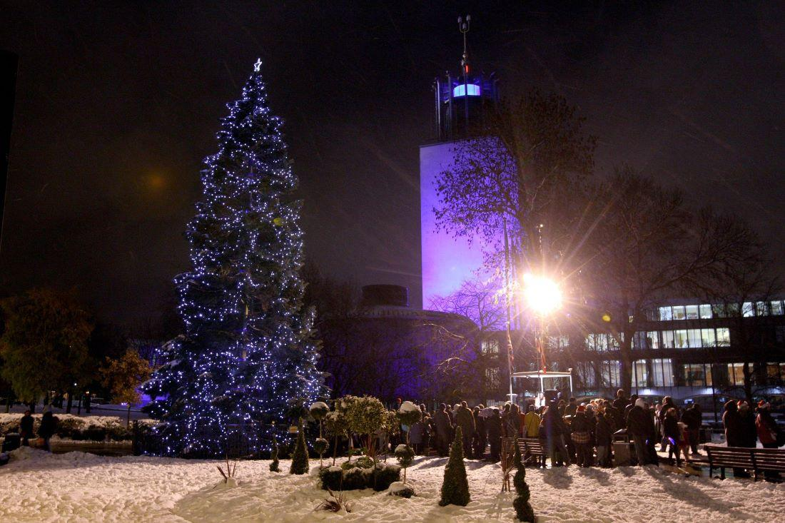 Lighting the Bergen Tree